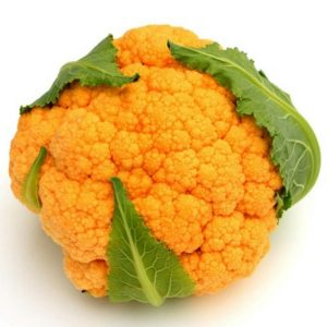 blomkal-orange-froer