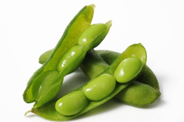 edamame-beans-are-a-young-soy-bean