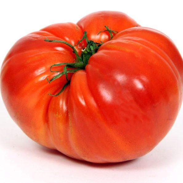 125_0_tomates_coeur_de_boeuf