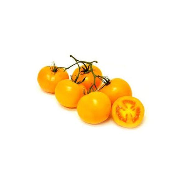 yellow-vine-tomato