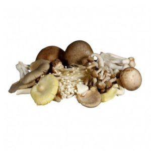 mushroom-wild-mix-500g